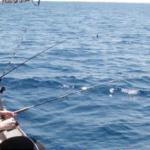 Рыбалка в Ницце: заказ из России
